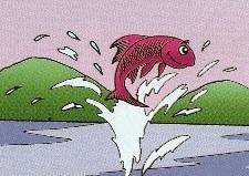 peixe0001